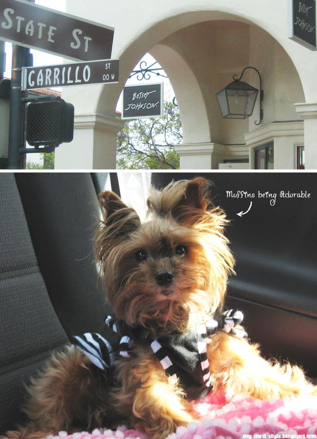 Santa Barbara CA collage 2