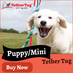 Puppy/Mini Tether Tug