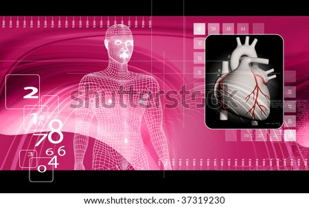 human body heart. of heart and human body in