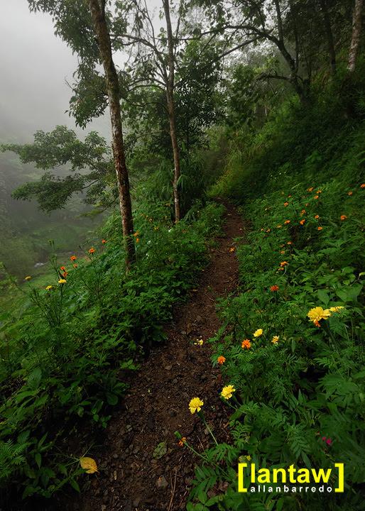Trail to Imugan Falls