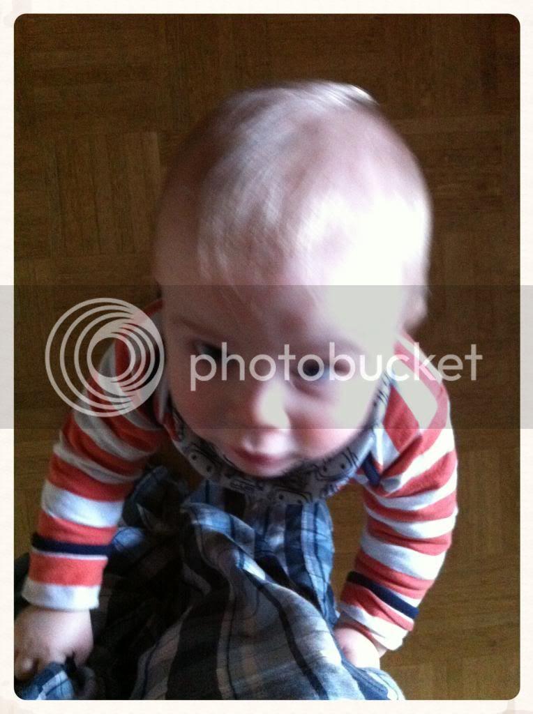 Klettermaxe - Der Zwuggel, 10 Monate alt
