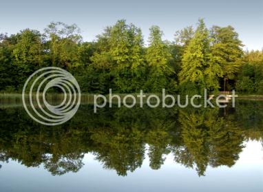 still pond sm