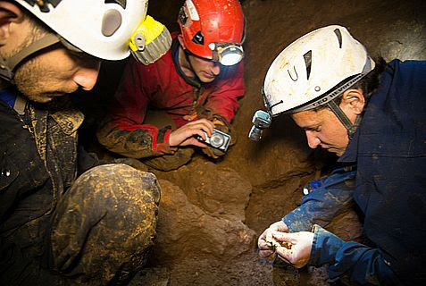 Officials of the Israel Antiquities Authority and members of the Israeli Caving Club search for finds in the cave.