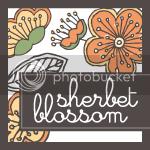 SherbetBlossom