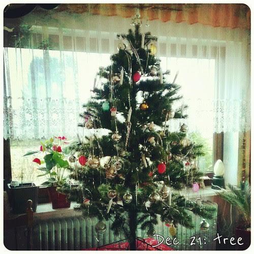 Dec 21: tree at my parents house .. #fmsphotoaday #tree #holiday