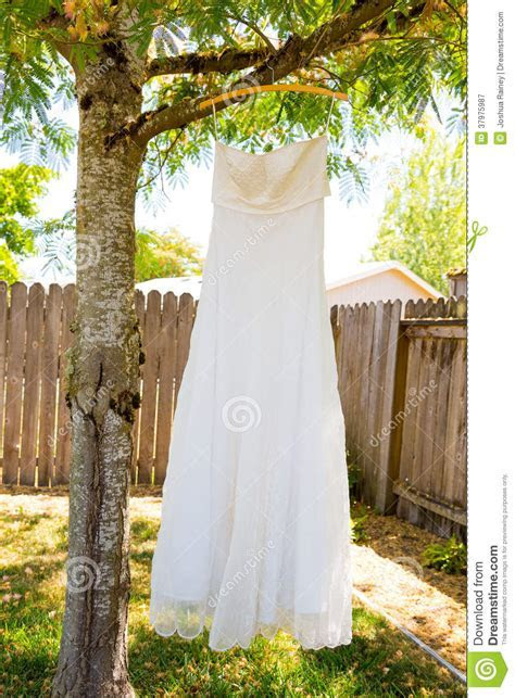 Wedding Dress Hanging In Tree Stock Image   Image of