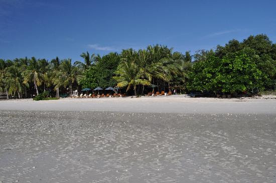 Photos of Amarela Resort, Panglao Island