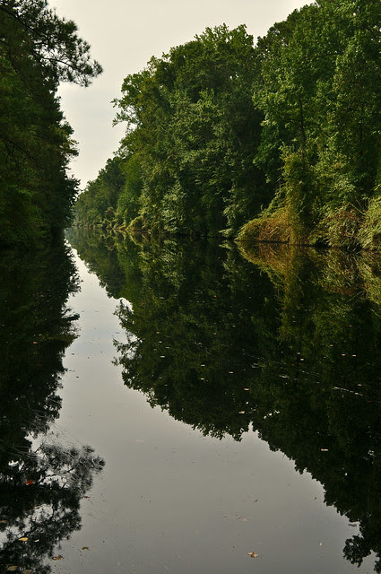 The Dismal Swamp Canal