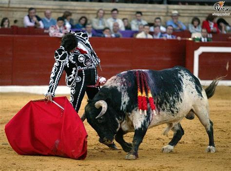 corrida hiszpania 29