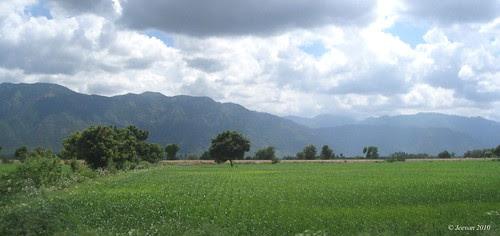 A view of Western Ghats along green fields