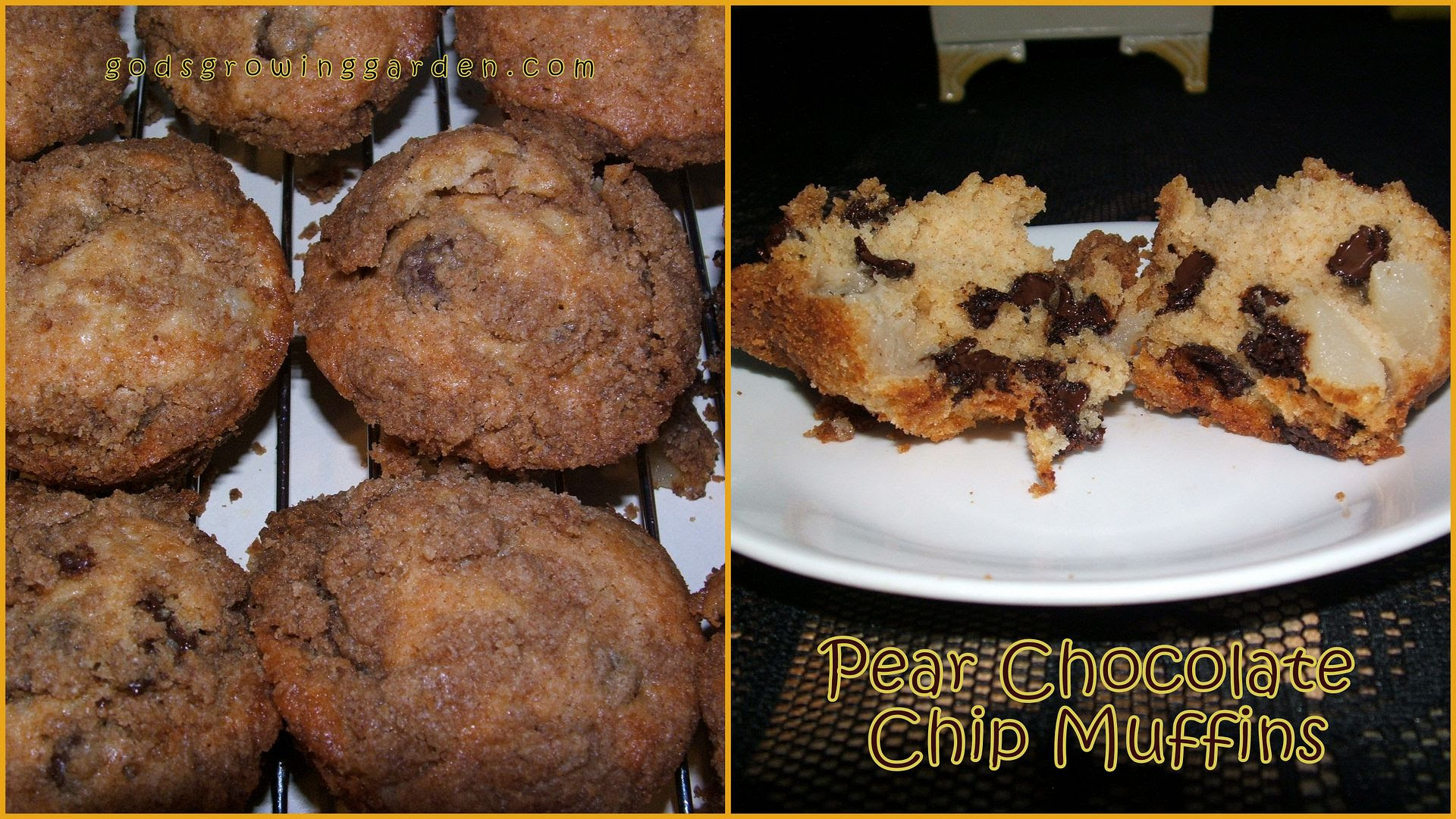 Pear Chocolate Chip Muffins by Angie Ouellette-Tower for godsgrowinggarden.com photo 2013-10-16_zps3b88bb22.jpg