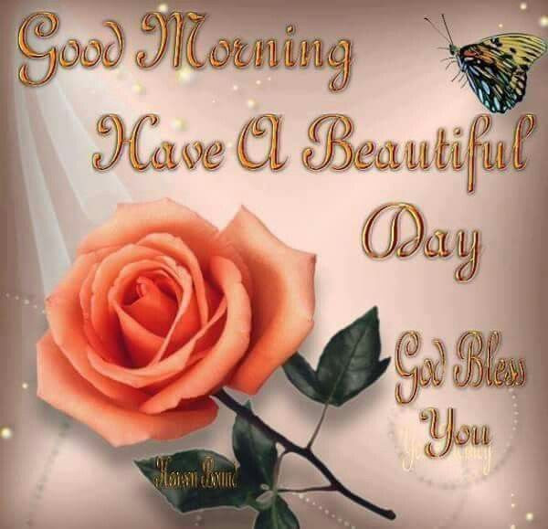 Good Morning Have A Beautiful Day God Bless You Pictures Photos