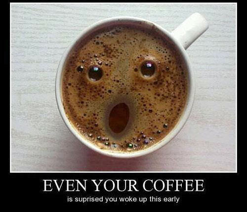 Funny Coffee Pictures, Photos, and Images for Facebook ...