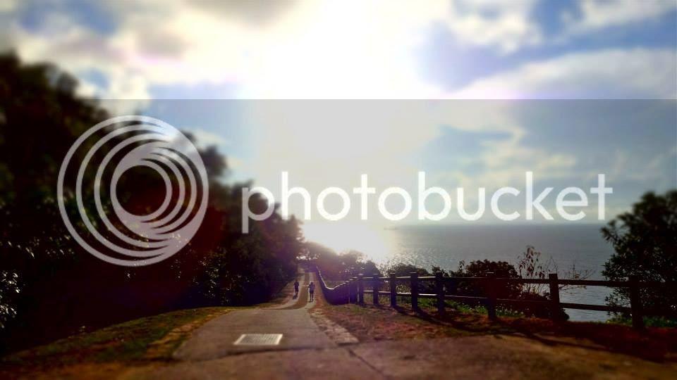 photo 1374143_10151932488501202_1480561967_n.jpg