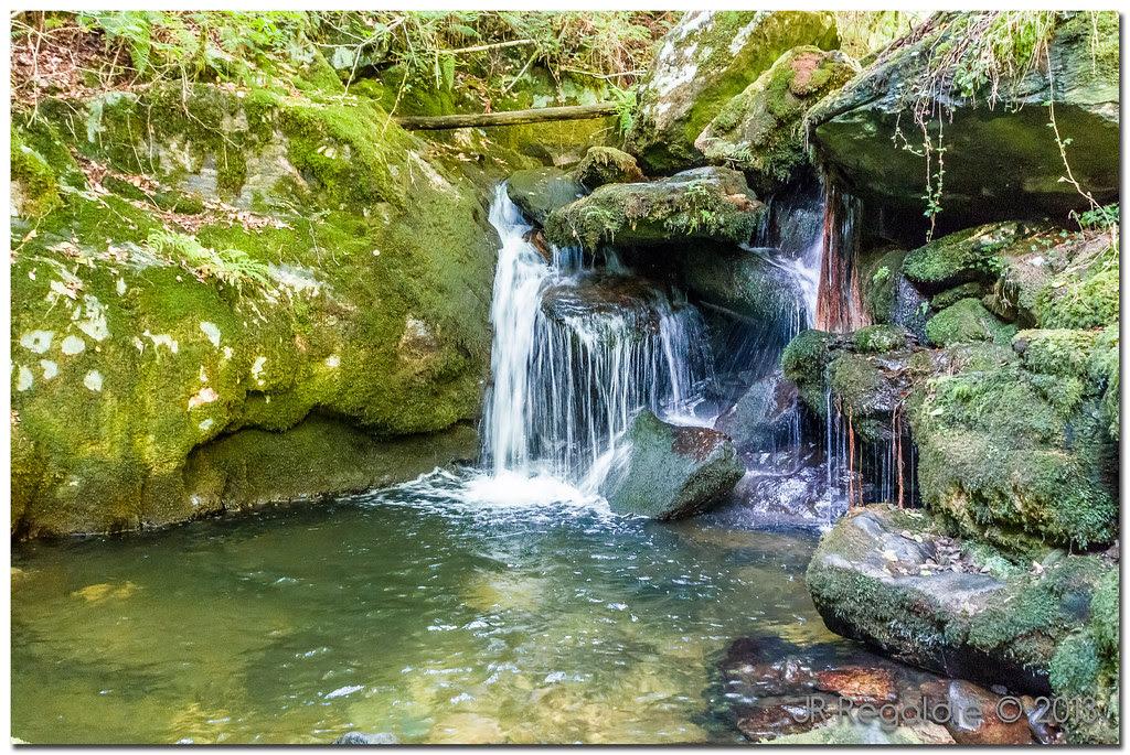 agua, piedras, musgo by JR Regaldie Photo