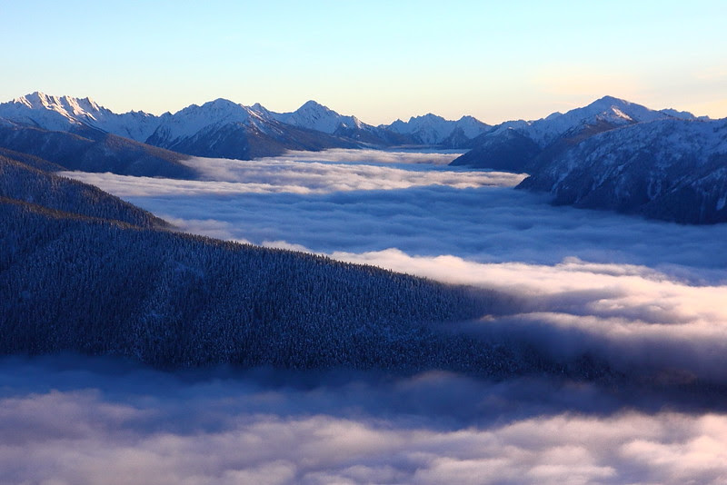 IMG_9824 Hurricane Ridge in Winter, Olympic National Park