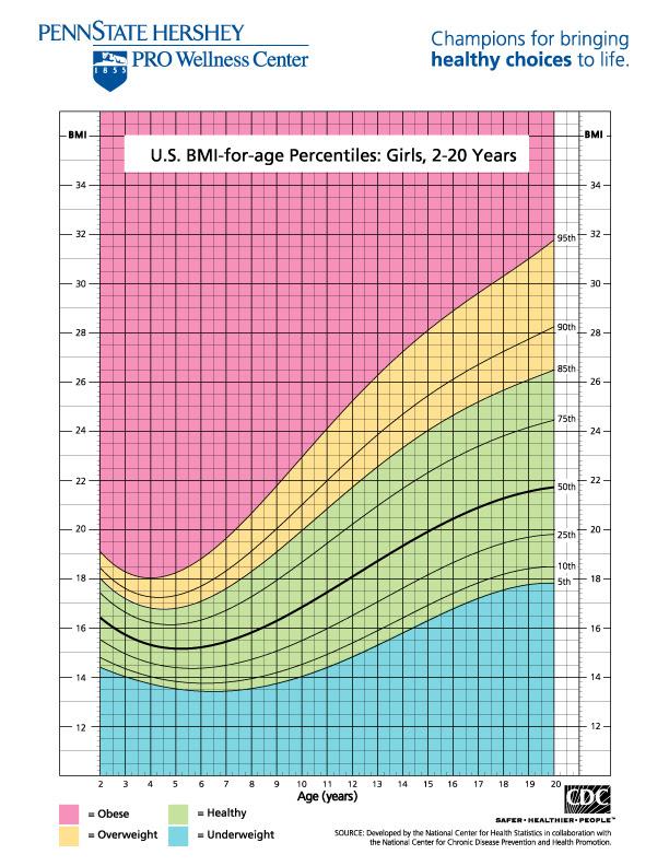 bmi body fat water percentage