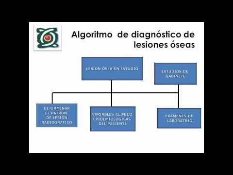 Colegio mexicano de ortopedia y traumatolog a estudio for W de porter ortopedia