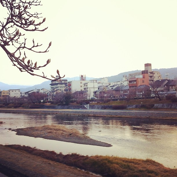 Breakfast by the riverside of Kamogawa. 鴨川にて朝食を。