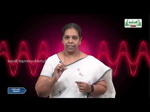 12th  Physics ஒளியியல்  பாடம்  பகுதி Q&A  Kalvi TV