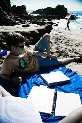Literature at the beach