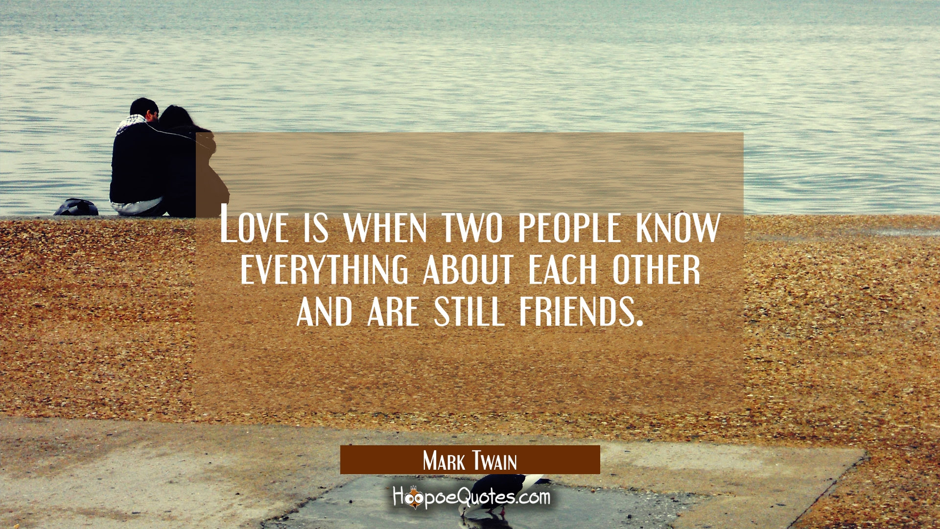 Love is when two people know everything about each other and are still friends Quotes