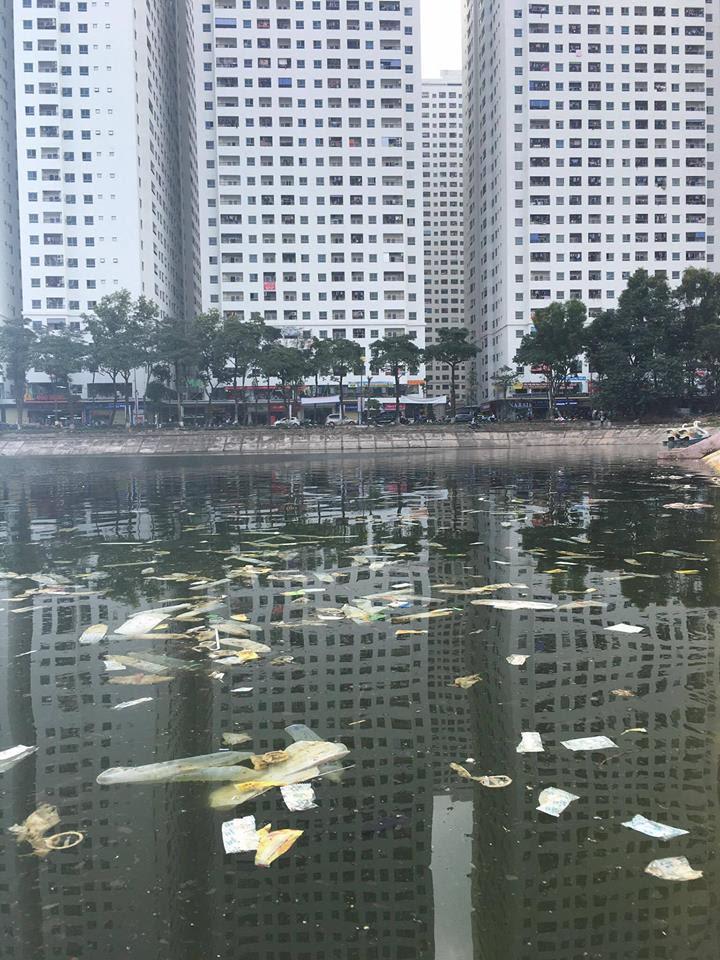 Gặp tác giả Tây chụp ảnh bao cao su nổi trắng hồ Linh Đàm