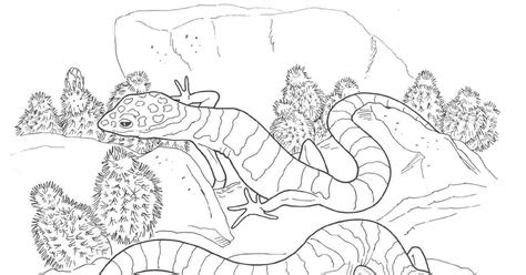 desert diorama pages coloring pages