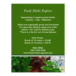 Your Herb Business Flyer