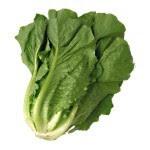 Manfaat Sayur Sawi • Kandungan vitamin yang cukup tinggi sangat bagus untuk menunjang kesehatan tubuh. Vitamin paling tinggi yang ada di sayur sawi ini adalah vitamin K, di mana vitamin ini sangat berguna untuk pembekuan darah, sehingga luka akan...