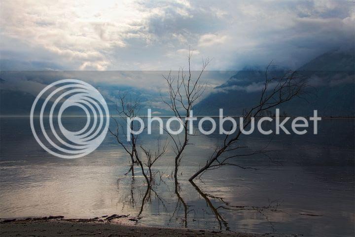 photo alexandr-sinitsyn-3_zps296f5be3.jpg