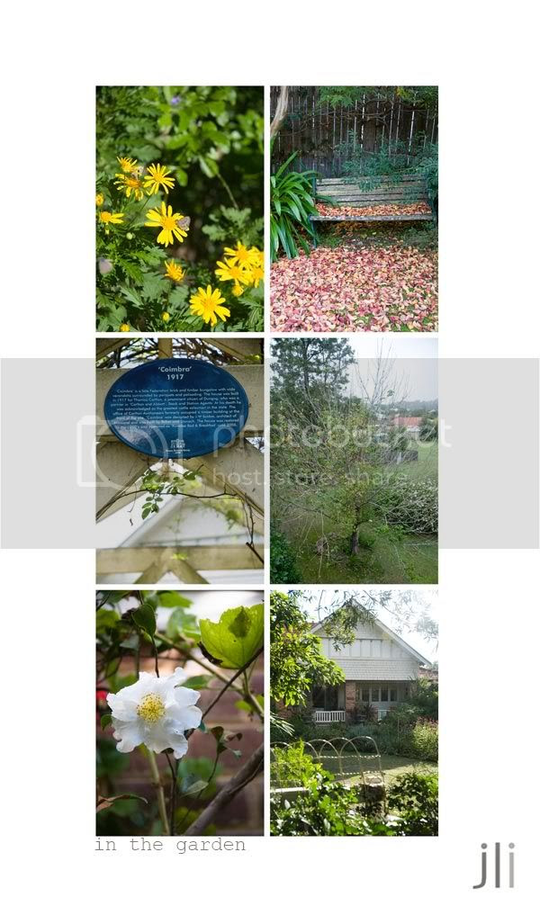 dungog,in the garden,nsw,jillian leiboff imaging,sydney photographer,travel photography