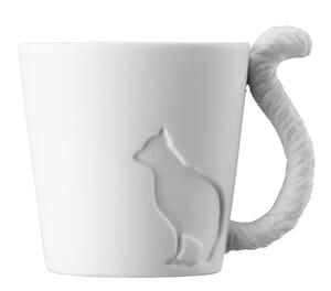 Kopp Katt
