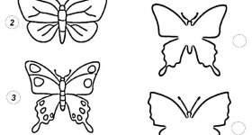 Abbina Le Farfalle Con Le Loro Ombre Mondo Bimbo