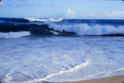 IMG_00645_Surfers
