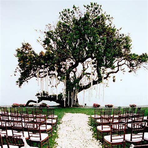Modern Wedding Invitation: Beautiful Outdoor Wedding