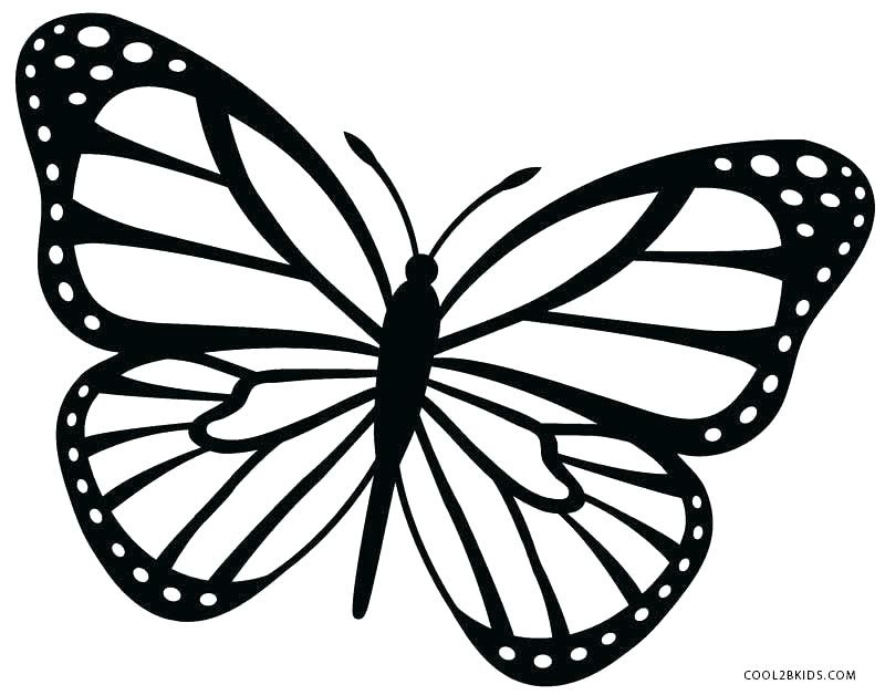 Monarch Butterfly Coloring Pages at GetColorings.com ...