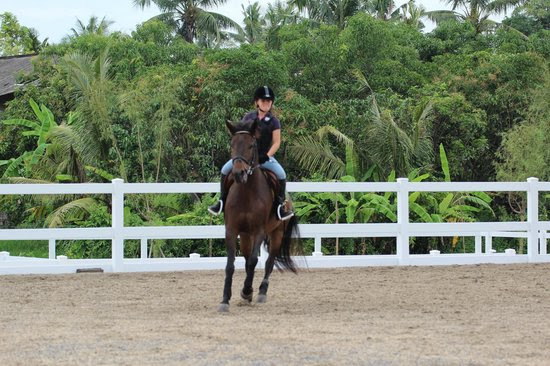 Bali Equestrian Centre Location Map,Location Map of Bali Equestrian Centre,Bali Equestrian Centre accommodation destinations attractions hotels map reviews photos pictures