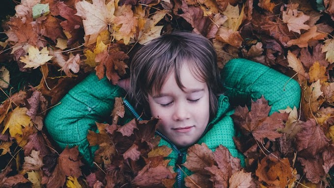 [100% Off UDEMY Coupon] - 5-Minute Mindfulness Meditations for Children