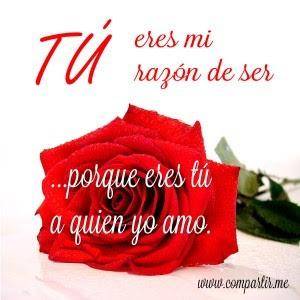 Rosa Roja Con Frase De Amor Bonita Para Dedicar
