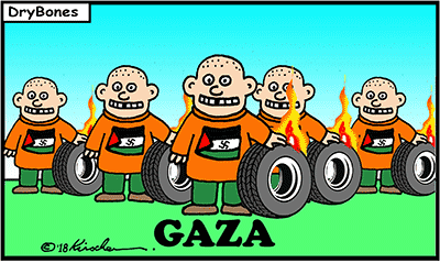 Dry Bones cartoon, Israel, Gaza, Hamas, Demonstrations, Palestinians,Arabs,