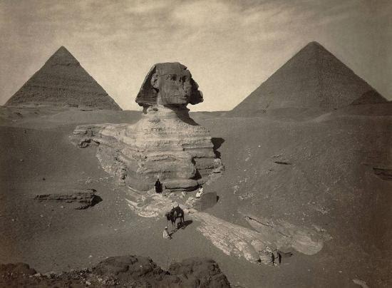 Sphinx mariette 1871a