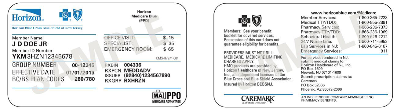Horizon Medicare Blue (PPO) - Horizon Blue Cross Blue ...