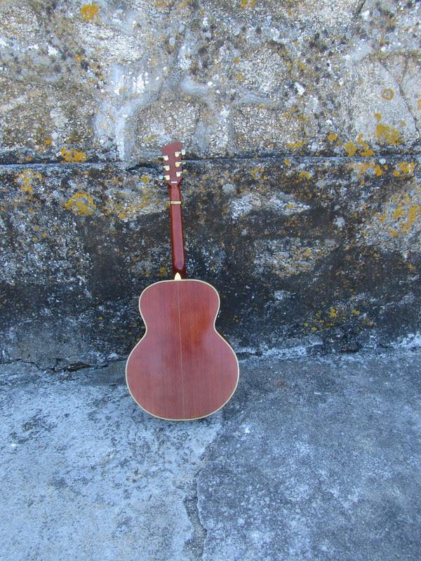 Mi guitarra, Anonymous