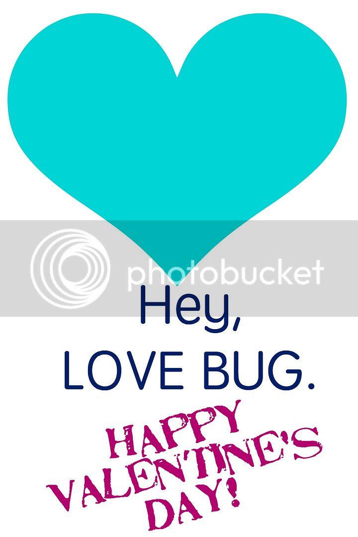 love bug turquoise and fuchsia photo bug1_zpsoax4efnw.jpg