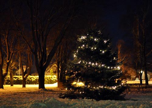 lights :: lys