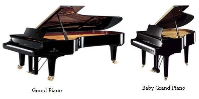 Baby Grand Piano Size Hobitfullringco