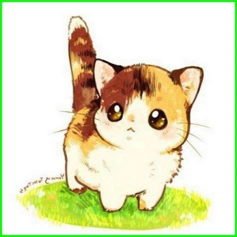 gambar kucing lucu imut   menggemaskan
