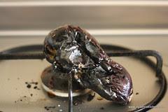 roasted brinjal