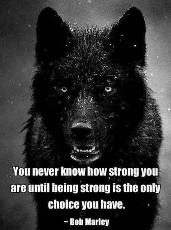 inspirational quotes about strength (11)